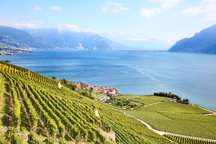 Karen Horn: Darum Schweiz | Avenir Suisse